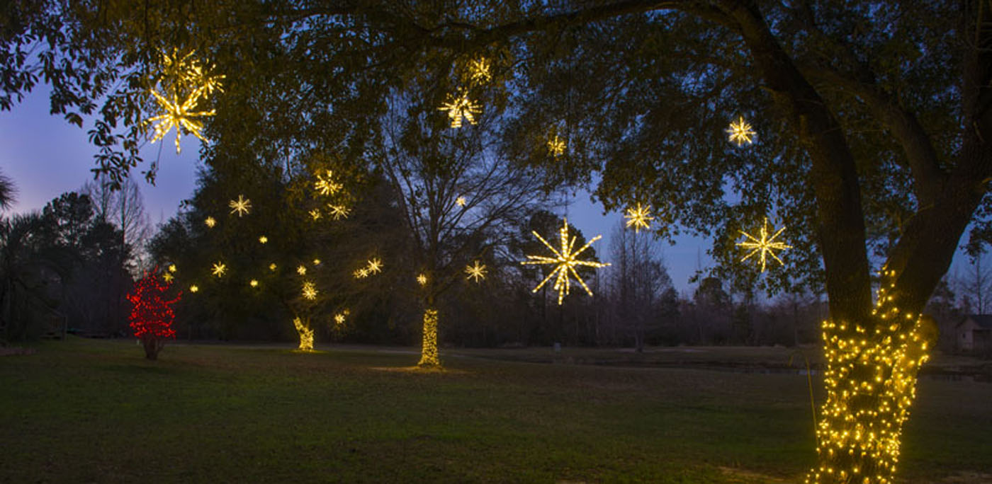 dorcheat bayou stars - Christmas In The Bayou